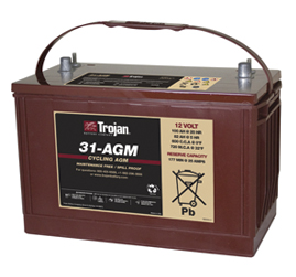 Trojan Group 31AGM  GEM CAR  12 Volt Battery Free Delivery most locations in the lower 48*.